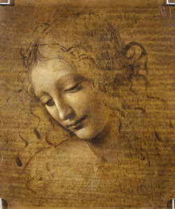 leonardo da vinci la scapigliata, head of a woman