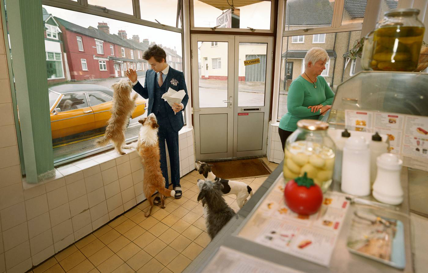 harry styles gucci in deli with dogs