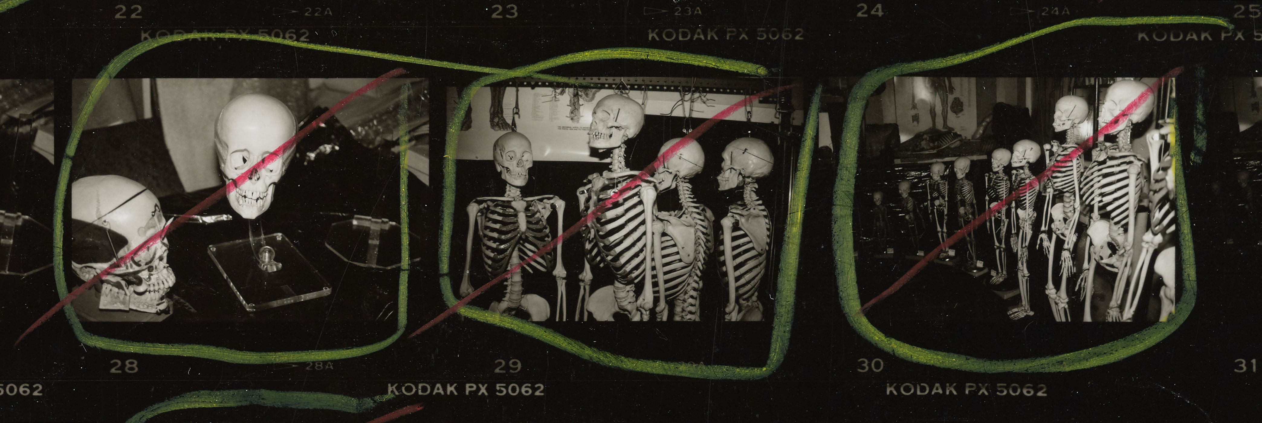Andy Warhol contact sheet with skulls and skeletons