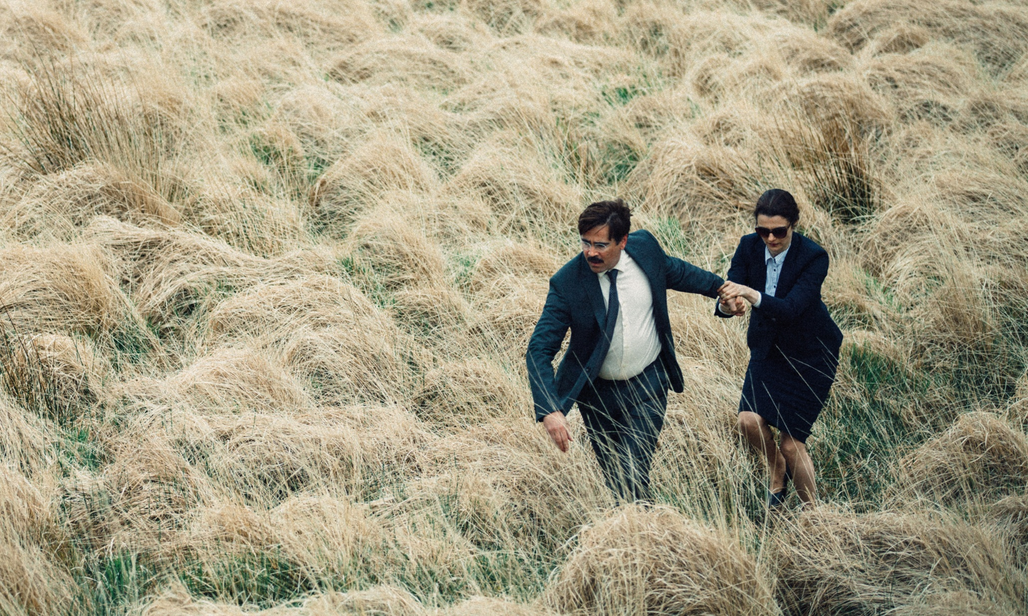 Colin Farrell in The Lobster Steamy Streaming