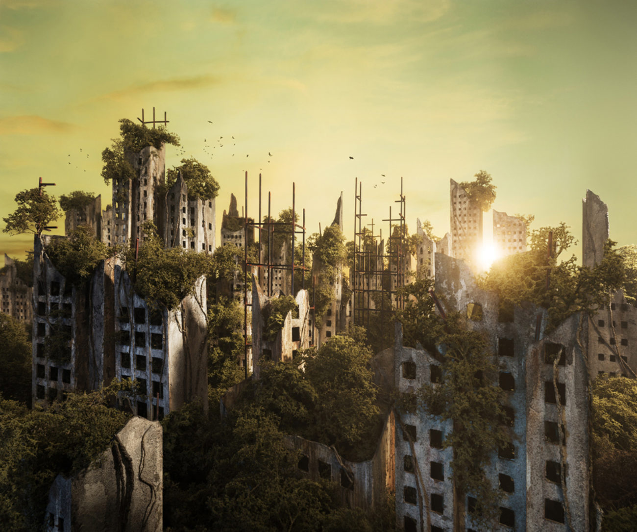 edited photo of a skyline, post-apocalyptic at dawn
