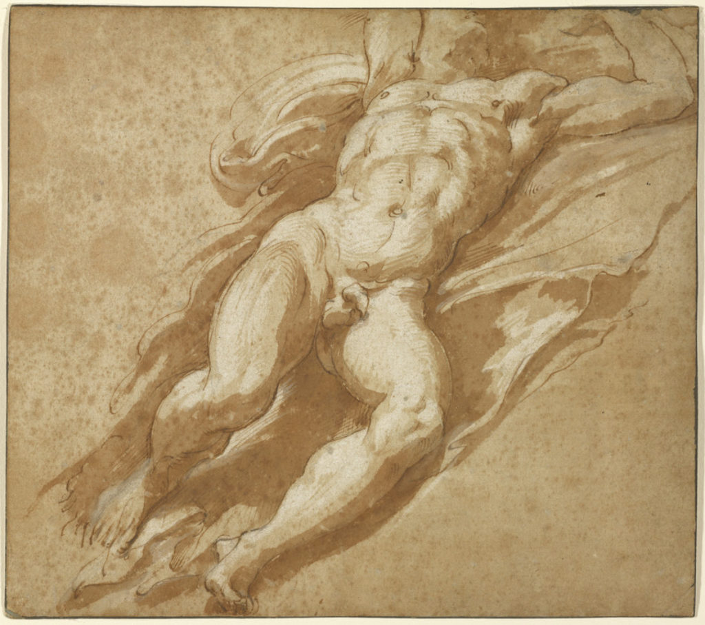 Drawing by Parmigianino