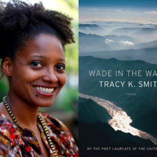 tracy k smith wade in the water